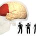 Cientistas conseguem identificar a região no cérebro que age como um forte analgésico natural  quando ativada