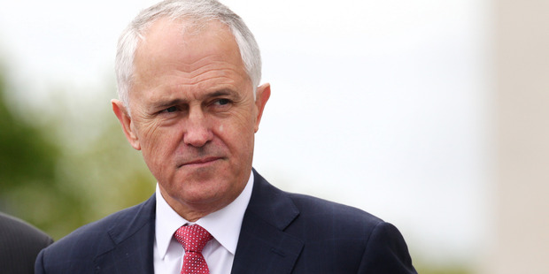 Australian Prime Minister Malcolm Turnbull warms to working with Pauline Hanson