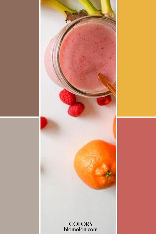 combinacion_variedad_de_color_1