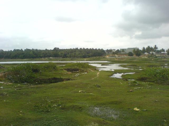 Gottigere Lake Encroachment
