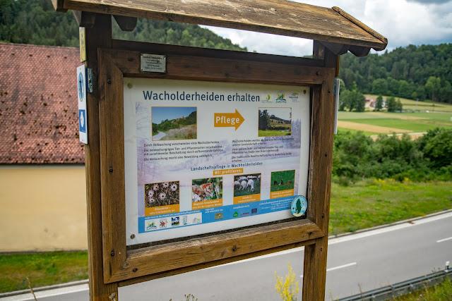 Wacholderweg von Aicha nach Allersburg  Wandern im Amberg-Sulzbacher Land 11