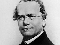Biografi Bapak Genetika Modern-Gregor Johann Mendel