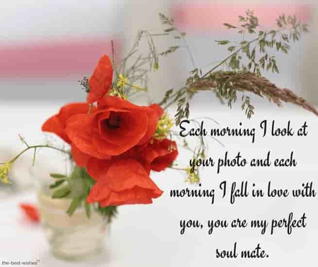 good morning text messages for bae with red flowers