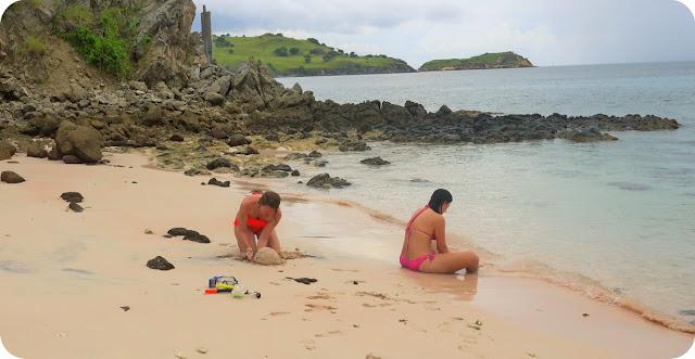 Pink Beach Taman Nasional Komodo
