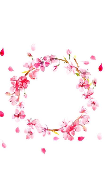 Beautiful Pink Crown Flower Wallpaper Wallpapers Art