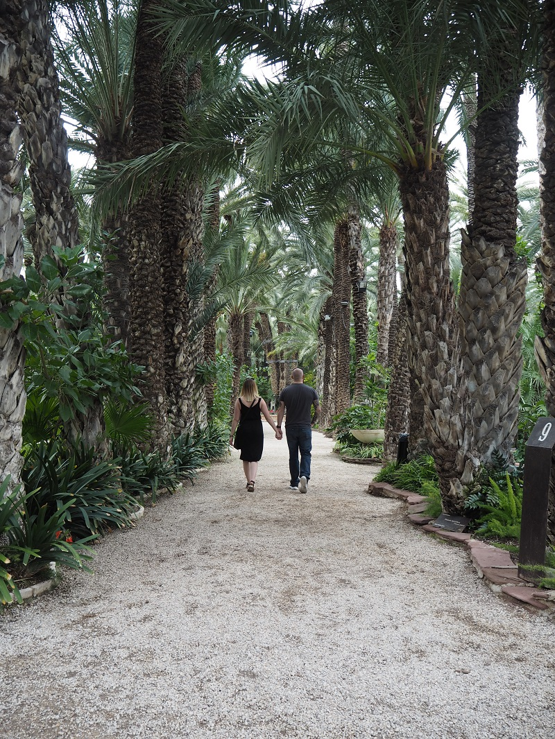 Couple walking through palm groves in Elche