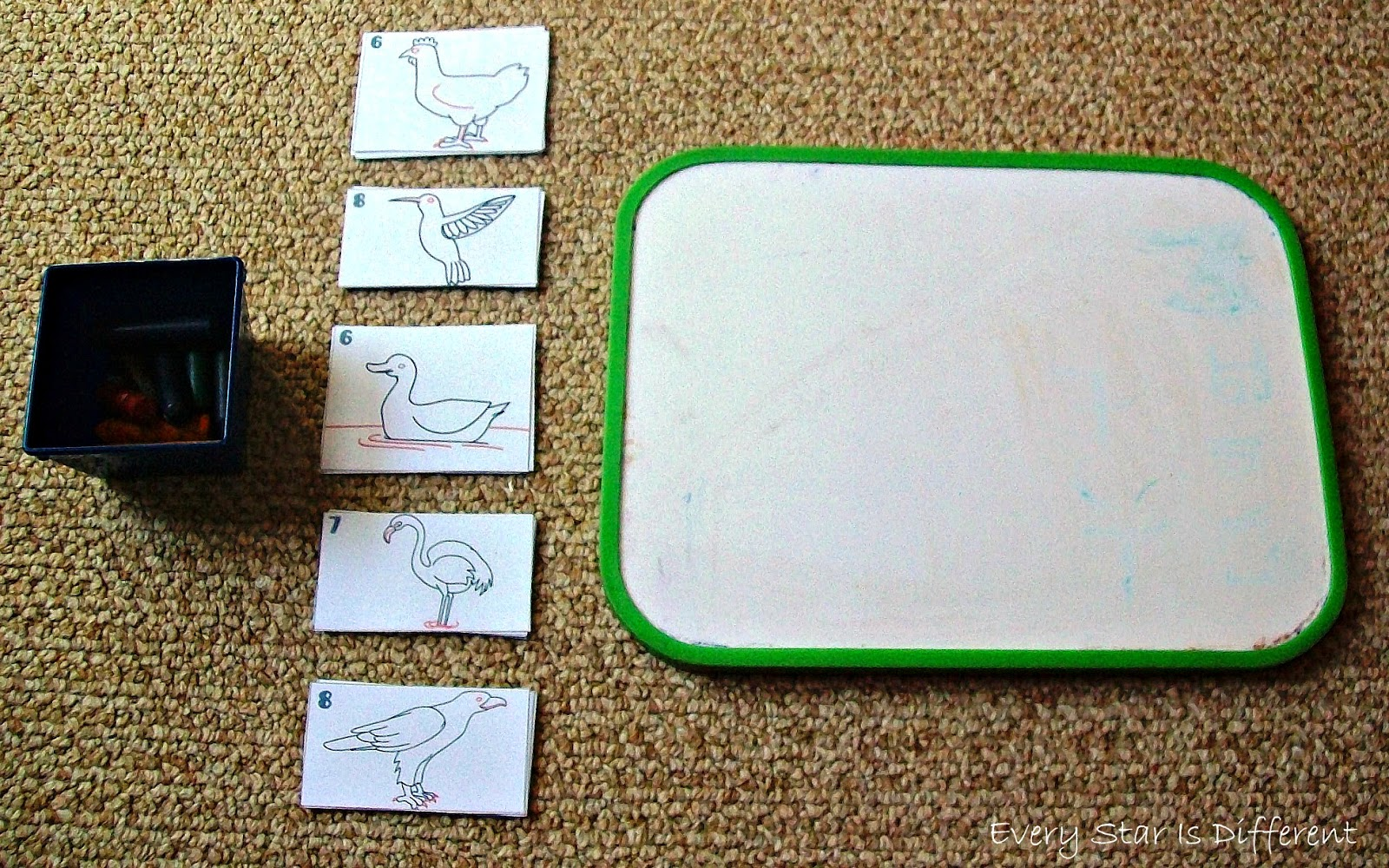 How to draw birds activity for kids