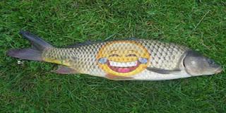 Dam Fish-Jokes Image