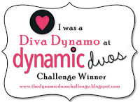 Dynamic Duo Challenge Winner