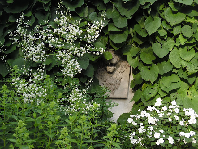 pnącze na murze, kamienna ozdoba ogrodowa