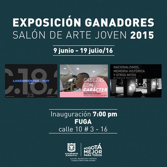 Exposición. Ganadores Salón de Arte Joven 2015