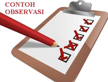 17 Contoh Teks Laporan Hasil Observasi, Pengertian ...