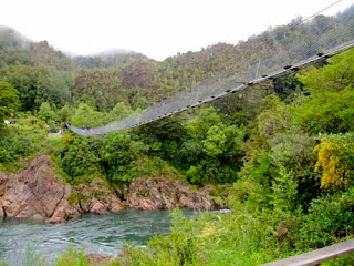 Buller Gorge Swinging Bridge South Island New Zealand