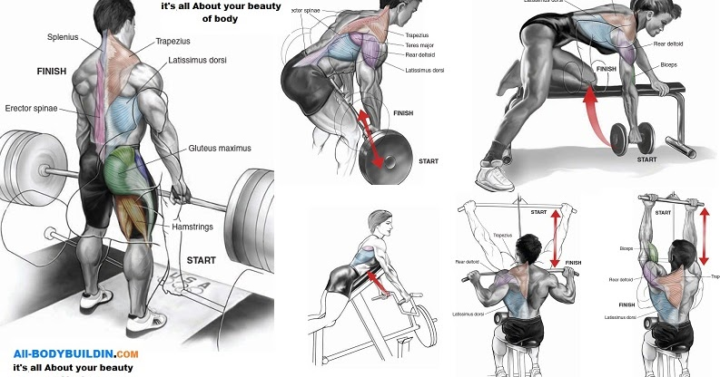 Back workout for men