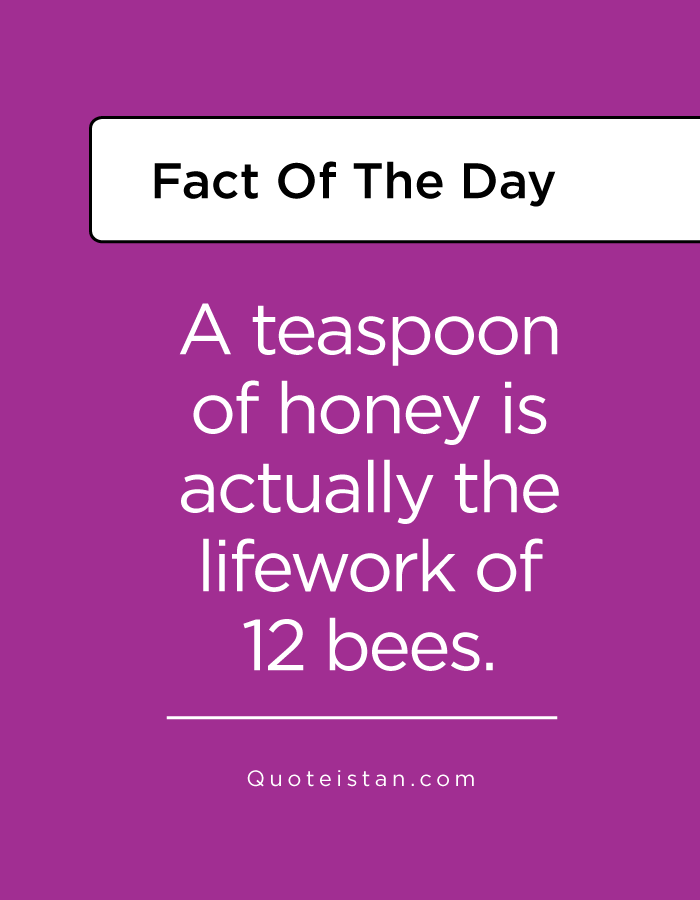 A teaspoon of honey is actually the lifework of 12 bees.