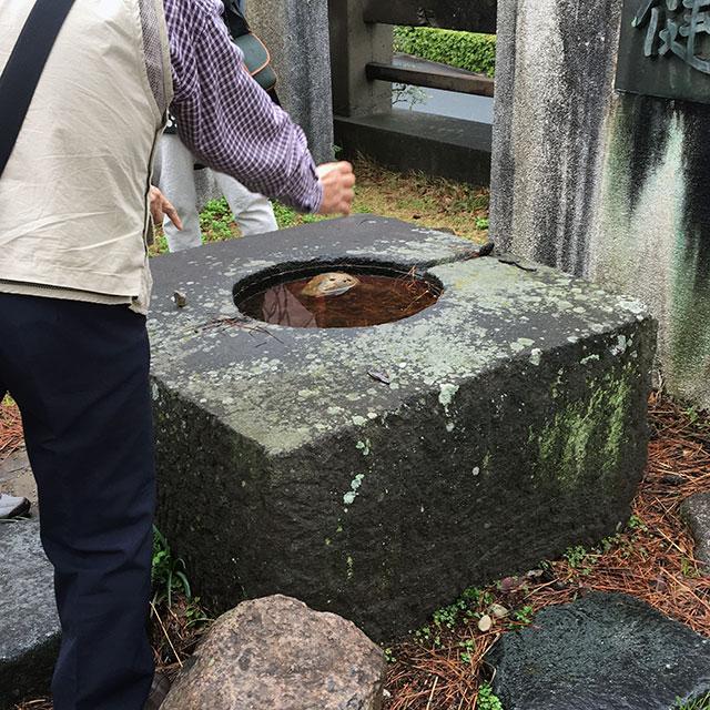 浜松諏訪神社大鳥居の礎石(2017年4月15日)