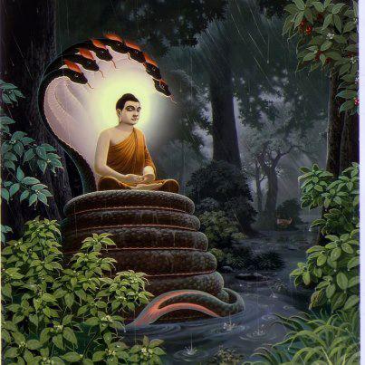 Đạo Phật Nguyên Thủy - Kinh Tăng Chi Bộ - Sống viễn ly