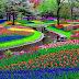 9 Keuntungan Membuat Taman Bunga di Pekarangan (Sedikit Perubahan di Rumah yang Merubah Hidup Kamu)