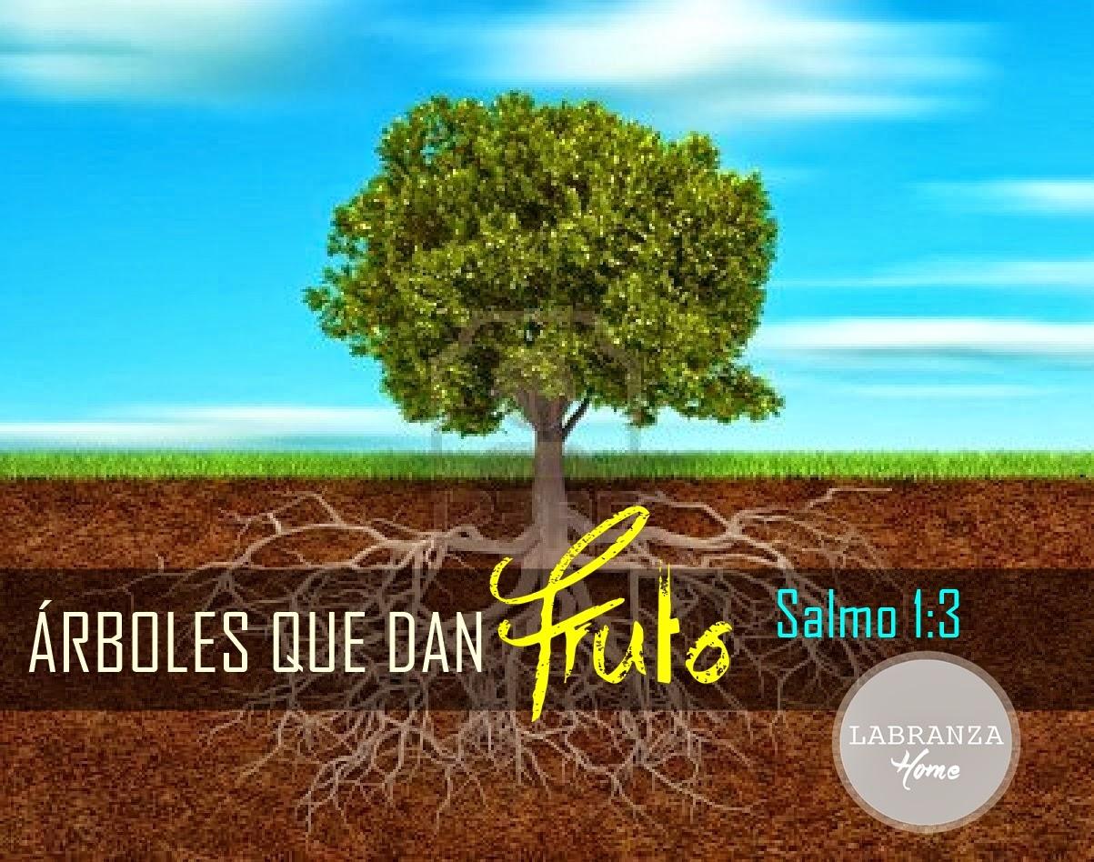 Pastor Cristian E. Pérez: ÁRBOLES QUE DAN FRUTO