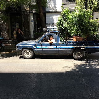 Samochód z roślinami