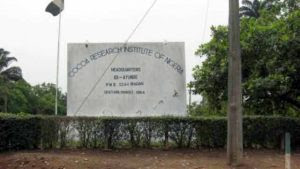 Cocoa Institute Reinstates 91 Sacked Workers After PMB's Intervention 1