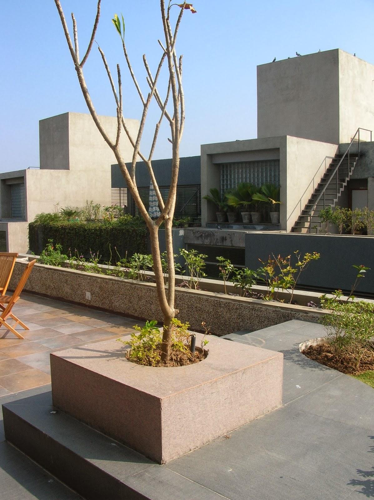 terrace garden design