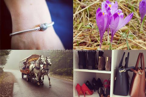 Marzec i kwiecień 2016 na zdjęciach  - czytaj dalej »