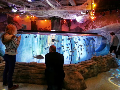 Square Ray Tank aquarium SeaLife Manchester Trafford Centre