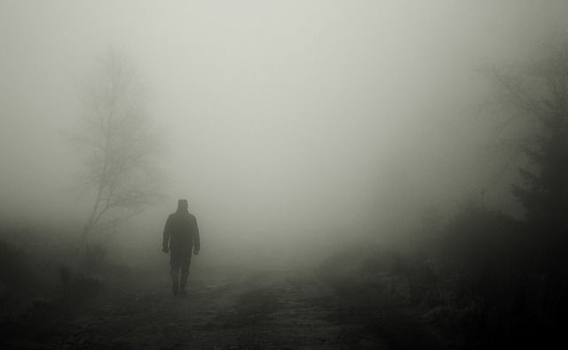 creepy walk in the fog