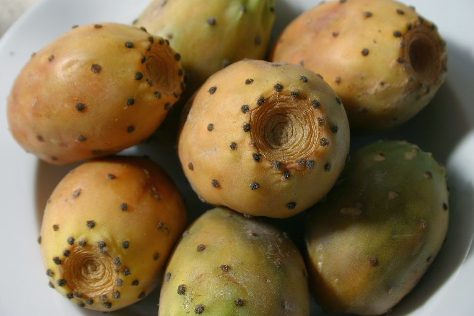 Chumbera or prickly pear, a lovely dessert option in Andalucia