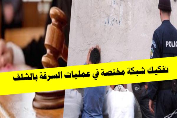 تفكيك جمعية أشرارمختصة في عمليات السرقة بالشلف