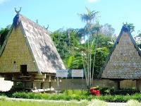Rumah Tambi, Rumah Adat Provinsi Sulawesi Tengah