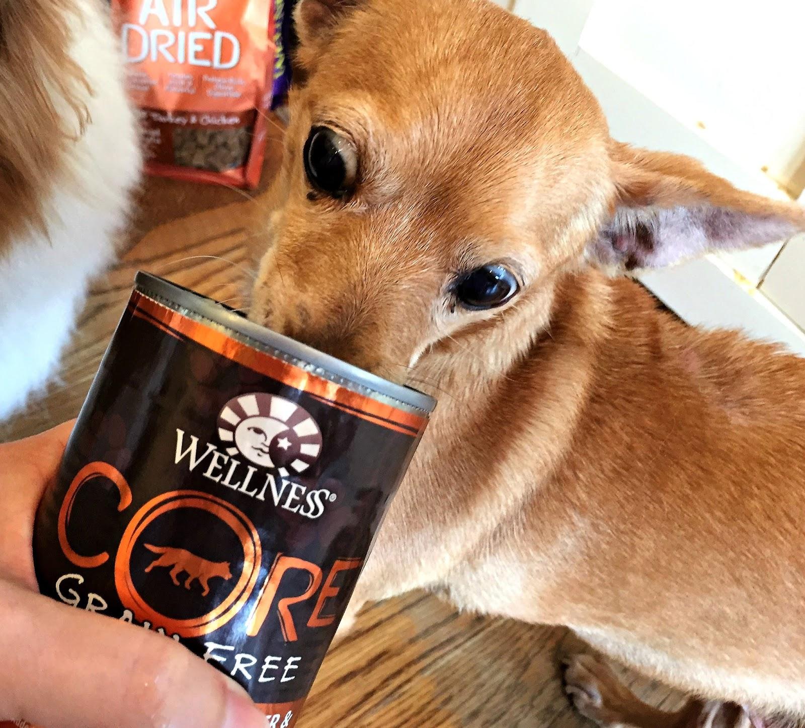 Least Healthy Dog Breeds