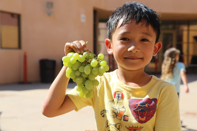 Los Angeles Food Bank interview volunteering giving back