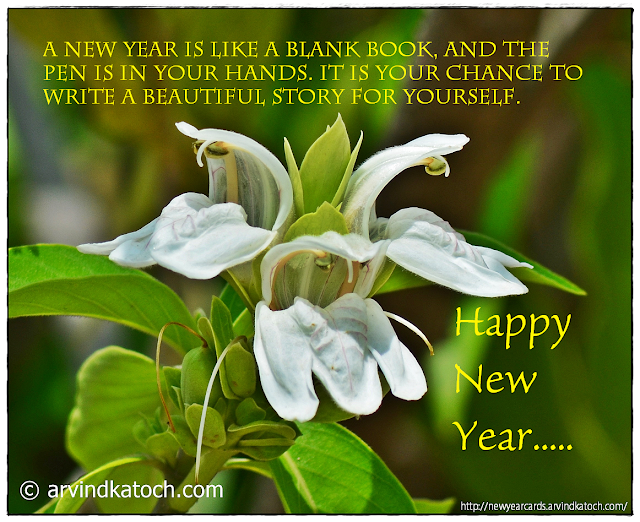 Happy New Year, Forest, White, Flower Card, beautiful story, blank book, pen, hands,