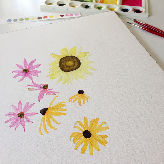 watercolor, botanical watercolor, watercolor flowers, summer flowers, painting process, sunflowers, coneflowers, black eyed susan, Anne Butera, My Giant Strawberry