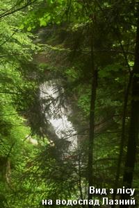 Вигляд водоспаду з лісу