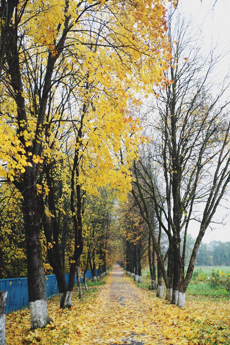 фотограф,фотосъемка в москве,фотограф даша иванова,идеи для свадьбы,фотограф москва,фотосъемка в туле,путешествия по России,красивые места в России,тульская область,романцевские горы,красивые места в тульской области,небольшое путешествие по россии,путешествие на машине,природа России,красивая природа,красивые места,полотняный завод,музей-усадьба полотняный завод,калуга