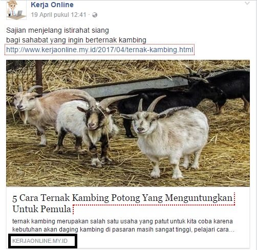 Memasang Tag Author Facebook Di Blog