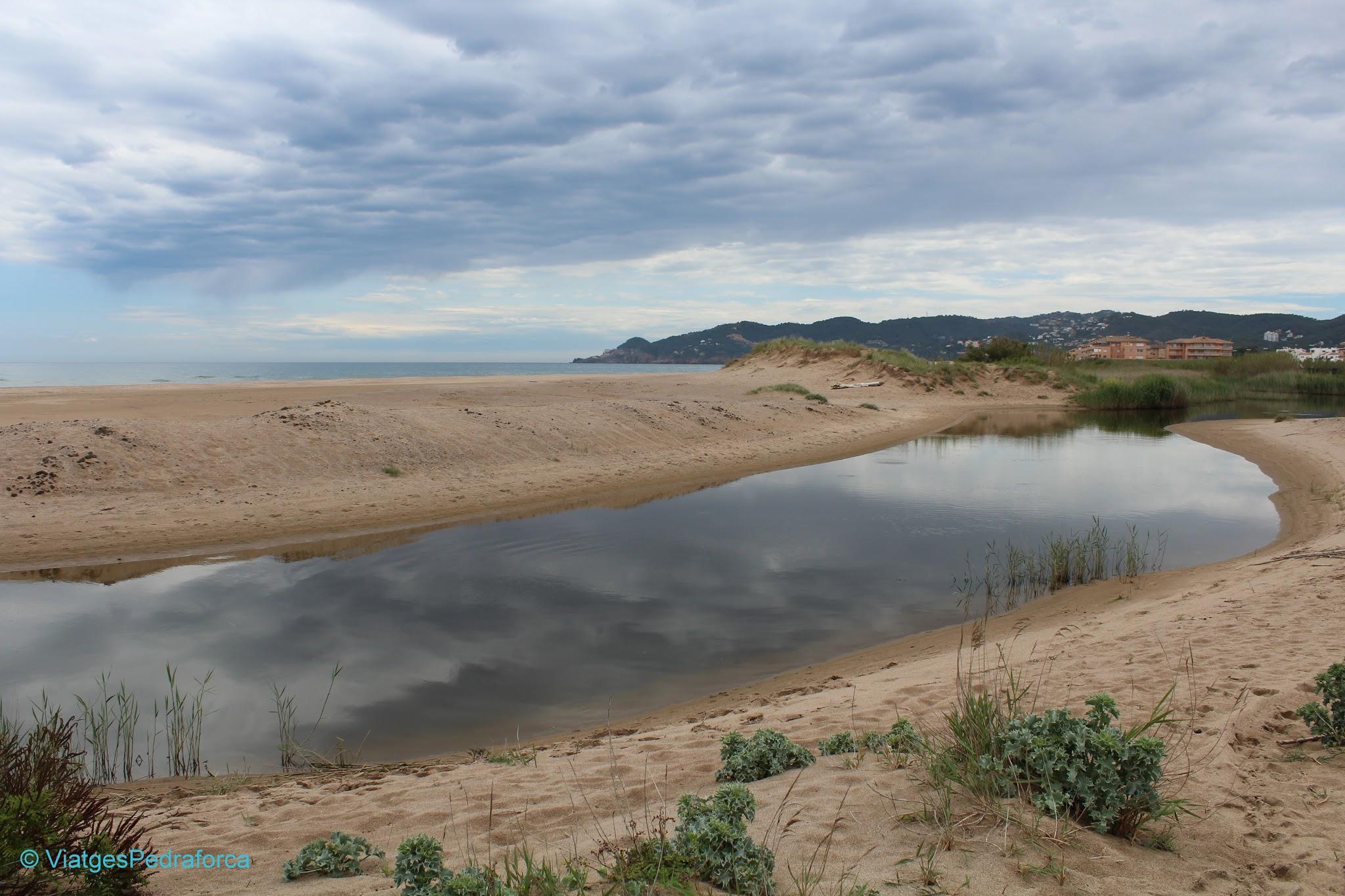 Parc natural del Montgrí, les Illes Medes i el Baix Ter, senderisme, excursions fàcils per la Costa Brava, Baix Empordà