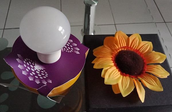 Biji Bunga Matahari Menginspirasi Bohlam Philips MyCare LED dengan teknologi Interlaced Optics