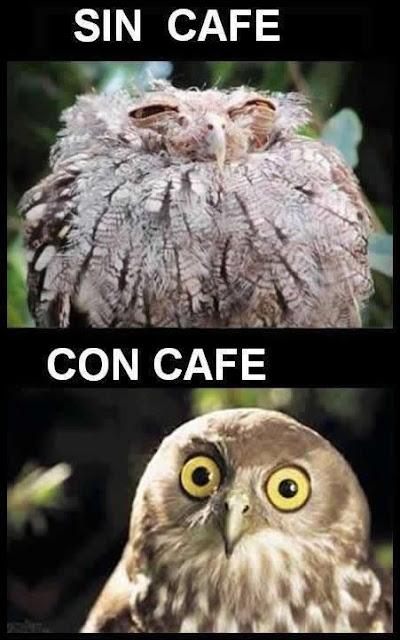 imagenes-humor-memes