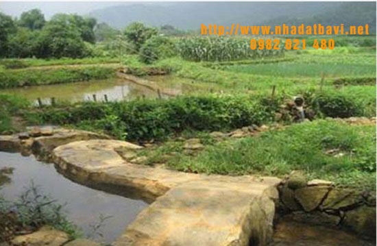 Đất trang trại Ba Vì: lựa chọn đầu tư thông minh tại huyện Ba Vì