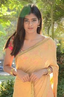 Actress Heba Patel Stills in Half Saree at Nenu Naa Boyfriends Movie Opening  0210.JPG