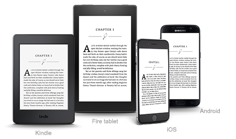 How to Update Your Kindle's Software ... - The eBook Reader