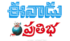 Eenadu Pratibha Education Jobs