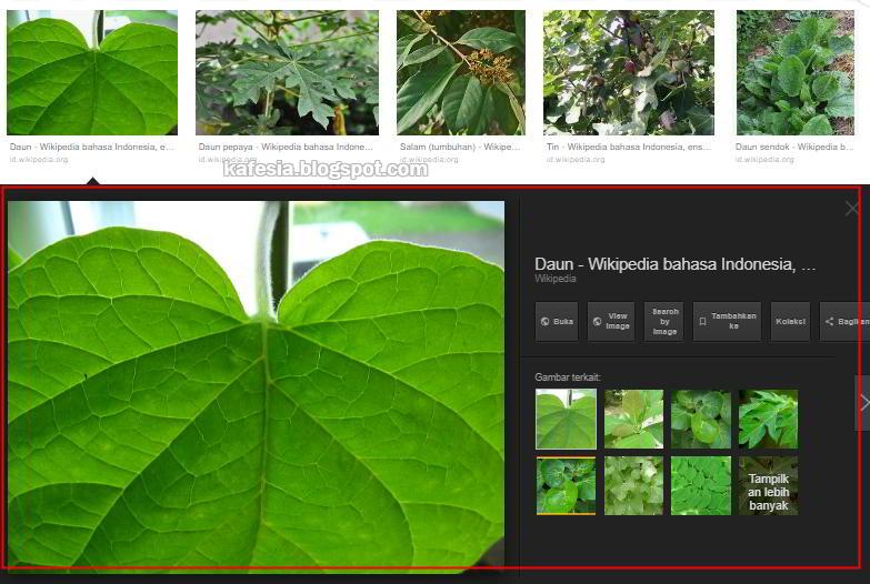 Cara Download Gambar dari Google di Laptop/PC untuk Pemula