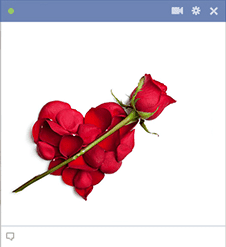 Red Rose Emoticon For Facebook