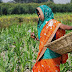 Mahindra Launches 'Prerna' Project for Women Farmers
