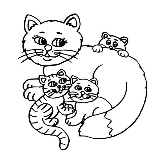 baby caterpillar coloring pages | Cute Baby Cats - Coloring Pages Animal Pictures